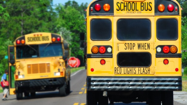 Navigating the School Bus Safety Zone