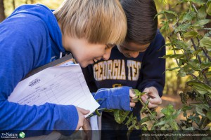 Students from Chamblee Middle School in Atlanta, Georgia conduct a habitat survey – looking for pollinators, insects, and other wildlife – in their school garden which is used as an outdoor science lab.